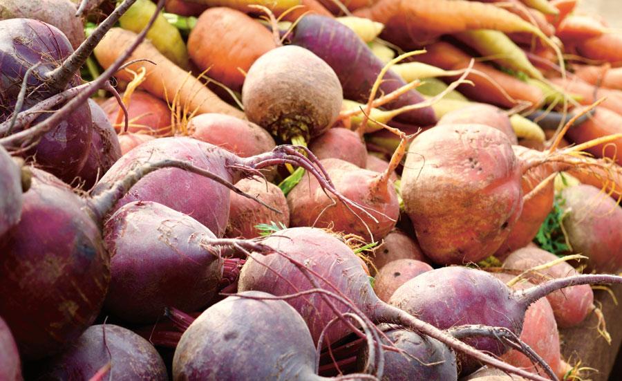 Rotfrukter - klimatsmart val