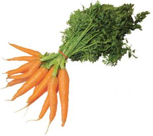 Ett knippe morötter