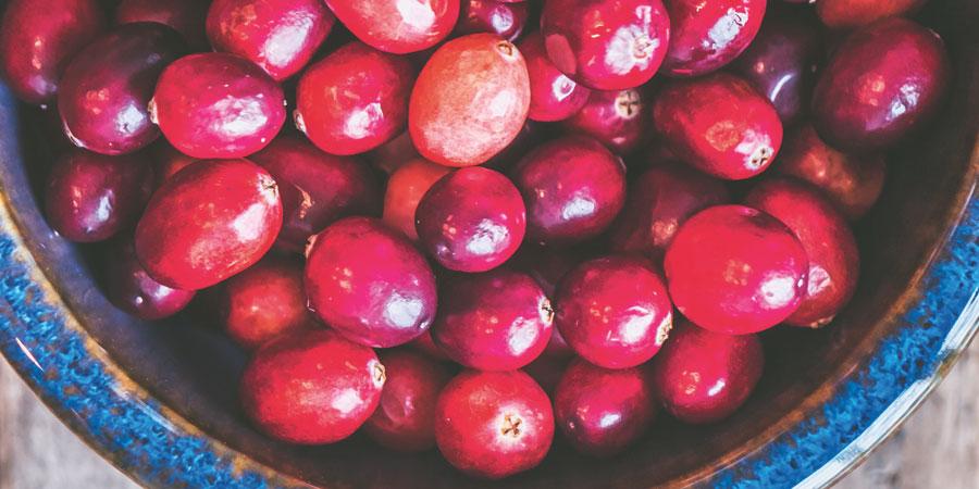 Tranbär - kärv, syrlig och nyttig