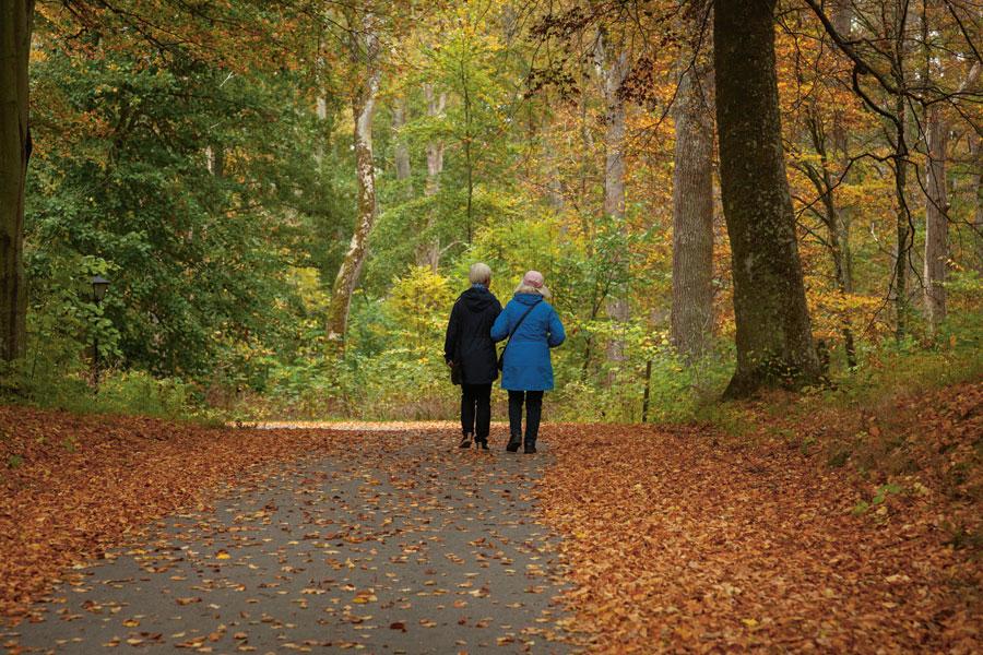 Promenad - kan minska låggradig kronisk inflammation
