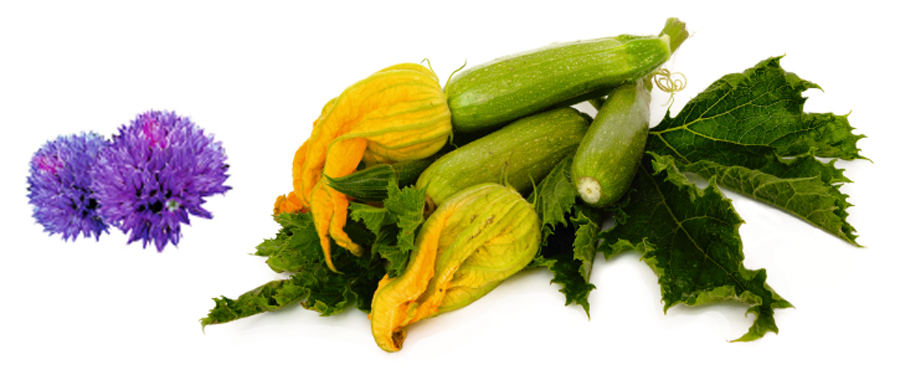 Gräslöksblommor och zucciniblommor - gott att äta